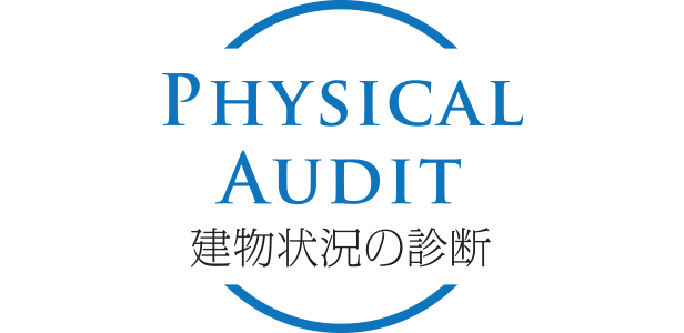 PHYSICAL AUDIT